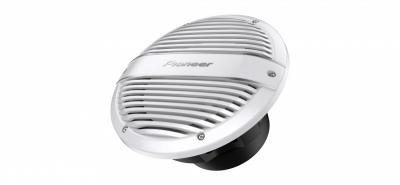 Сабвуфер Pioneer TS-ME100WC